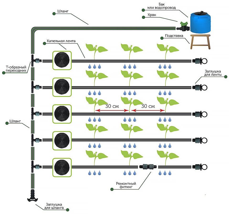Схема Капельный полив