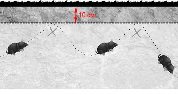 схема укладки Сетка от кротов